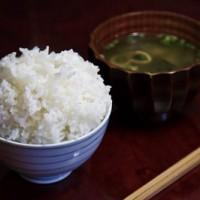 LOK_gohantomisoshiru_TP_V1[1]