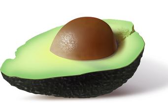 avocado-161822__340[1]