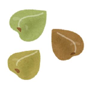 nuts_sobanomi[1]